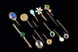 PIN COLLECTION  11 Pc Jewelry Collection with 10