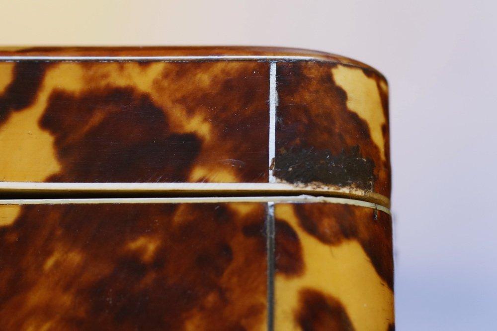 TORTOISESHELL TEA CADDY - 19th c. English Oblong - 5