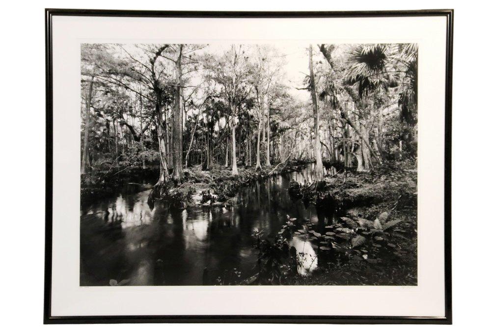 """CLYDE BUTCHER (FL/CA, 1942 - ) - """"Loxahatchee #9"""""""