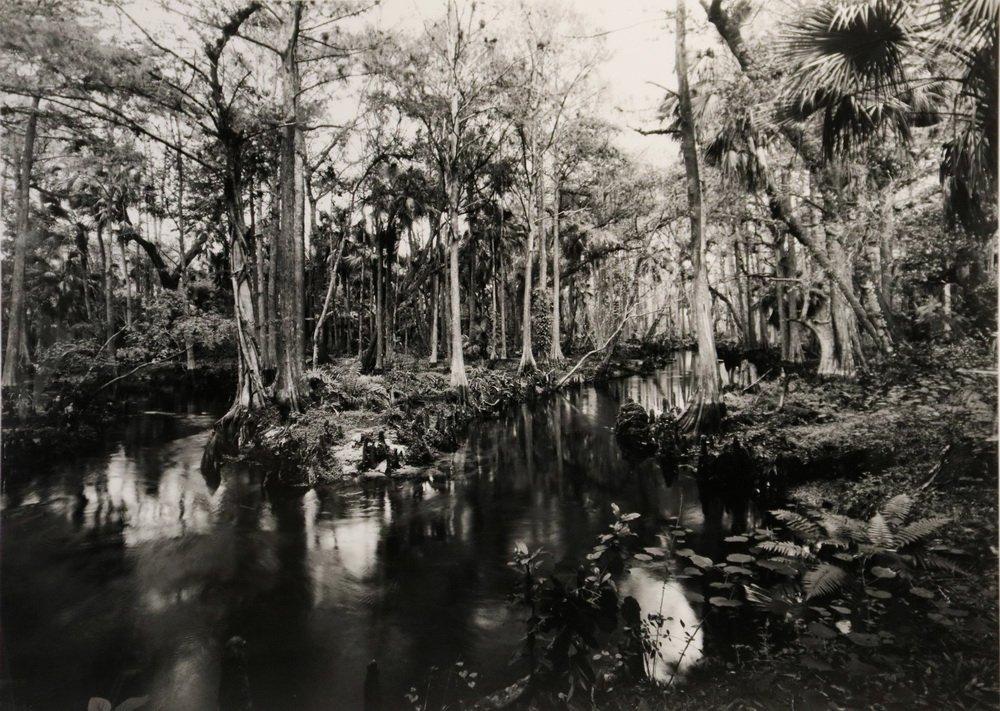 """CLYDE BUTCHER (FL/CA, 1942 - ) - """"Loxahatchee #9"""" - 2"""