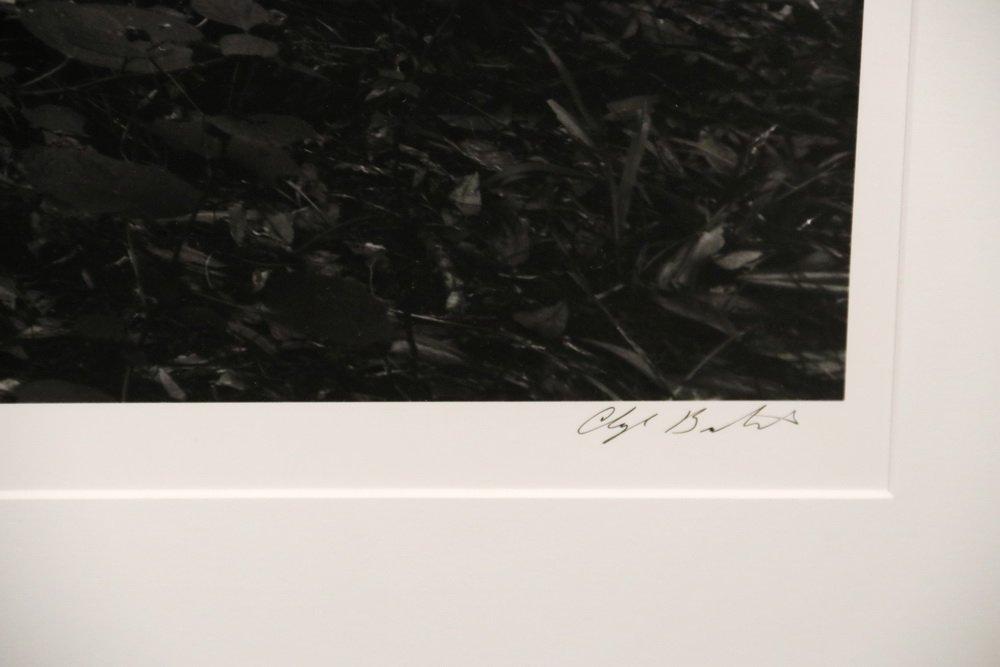 """CLYDE BUTCHER (FL/CA, 1942 - ) - """"Loxahatchee #9"""" - 3"""