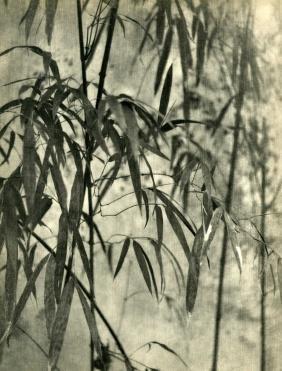 392: CHIN-SAN LONG [lang jingshan/lang chin