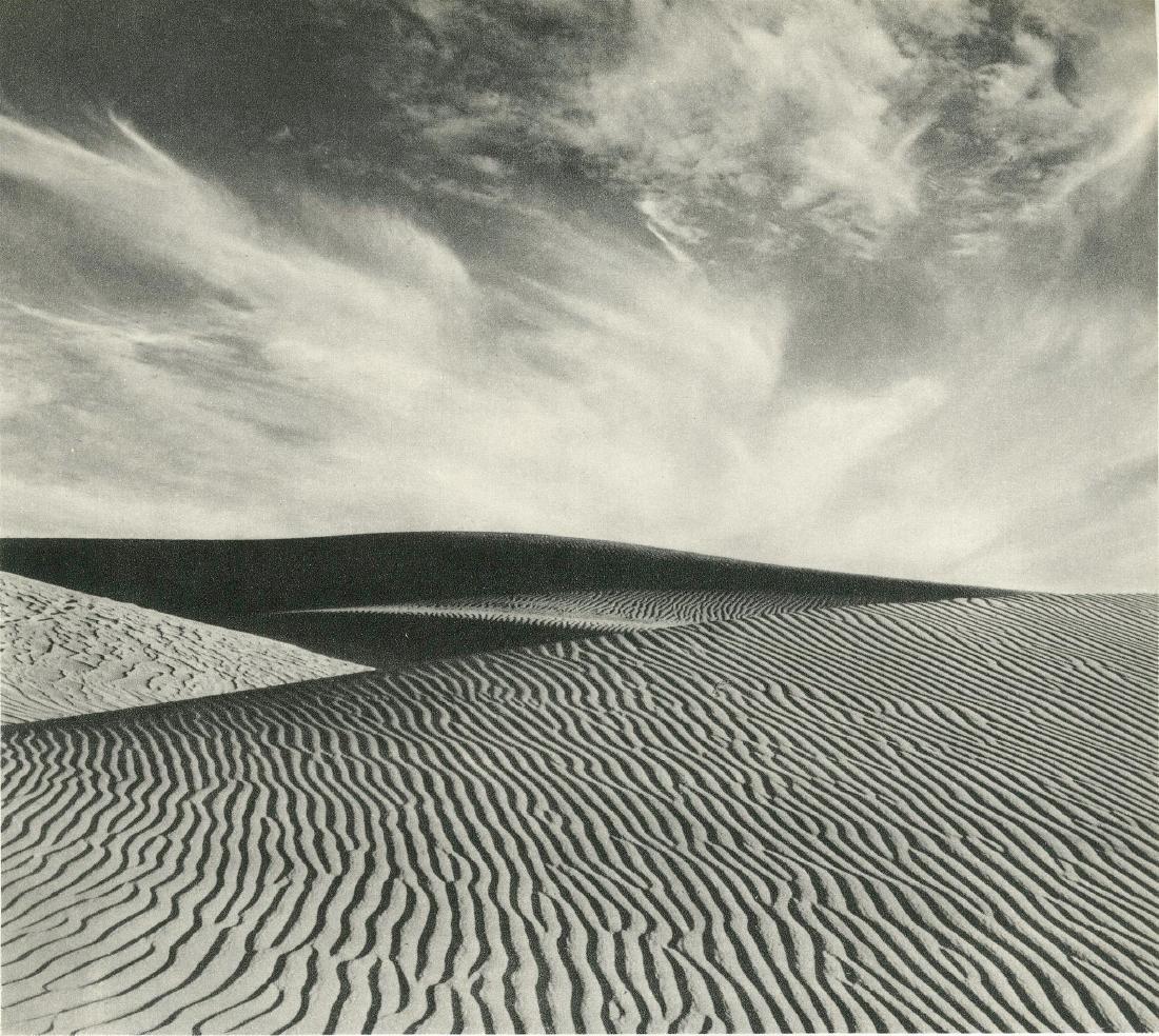 187: EDWARD WESTON - Dunes