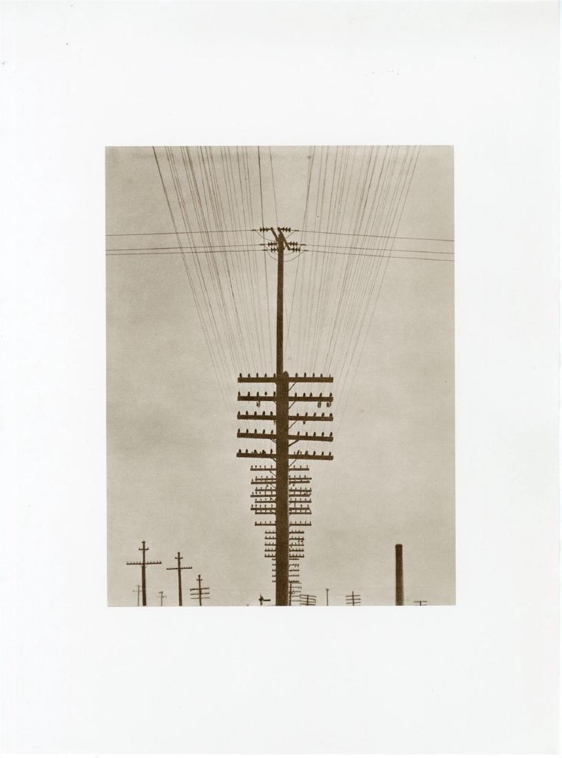 529: TINA MODOTTI - Telegraph Lines
