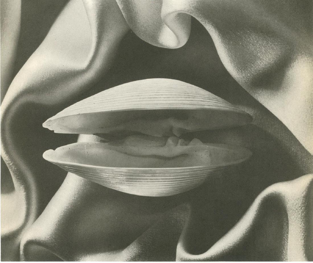 1137: RUTH BERNHARD - Shell in Silk