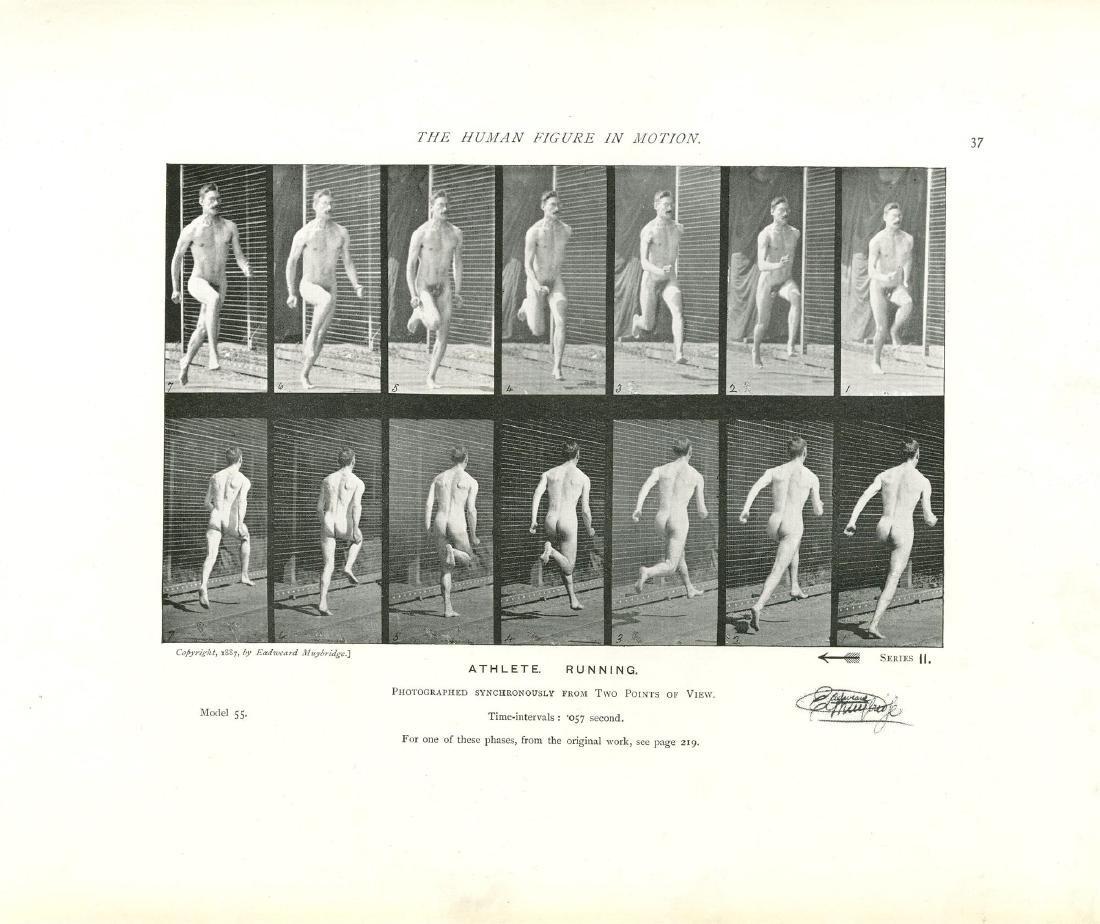 1322: EADWEARD MUYBRIDGE - Athlete: Running