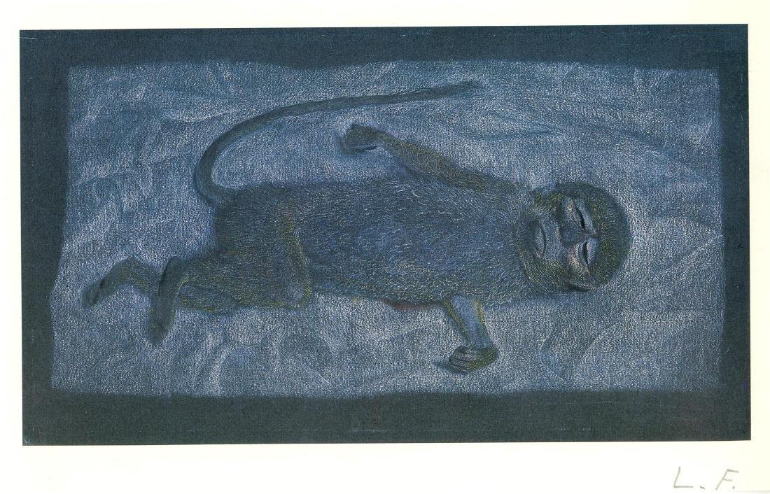 1416: LUCIAN FREUD - Dead Monkey