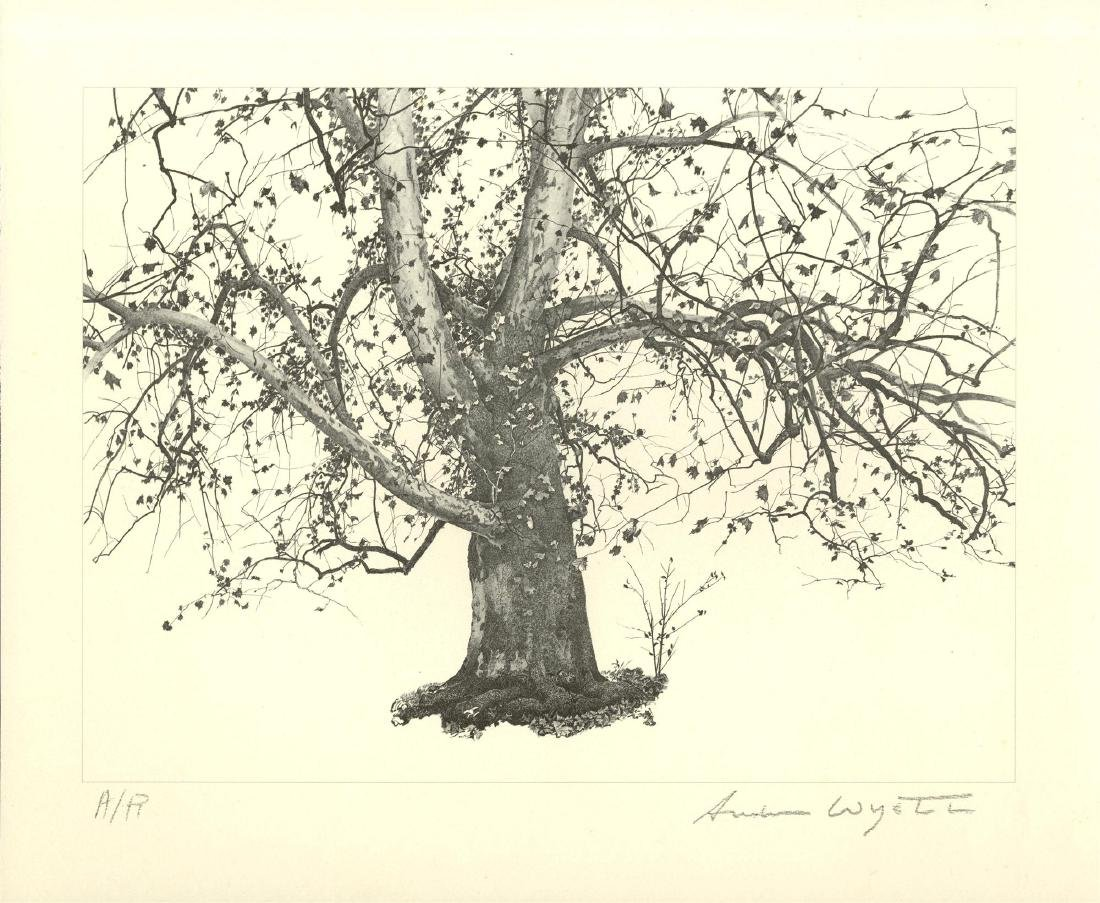 1711: ANDREW WYETH - New Leaves
