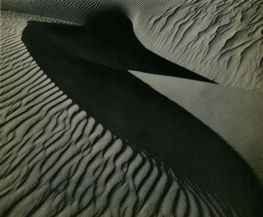 165: BRETT WESTON - Sand Dunes