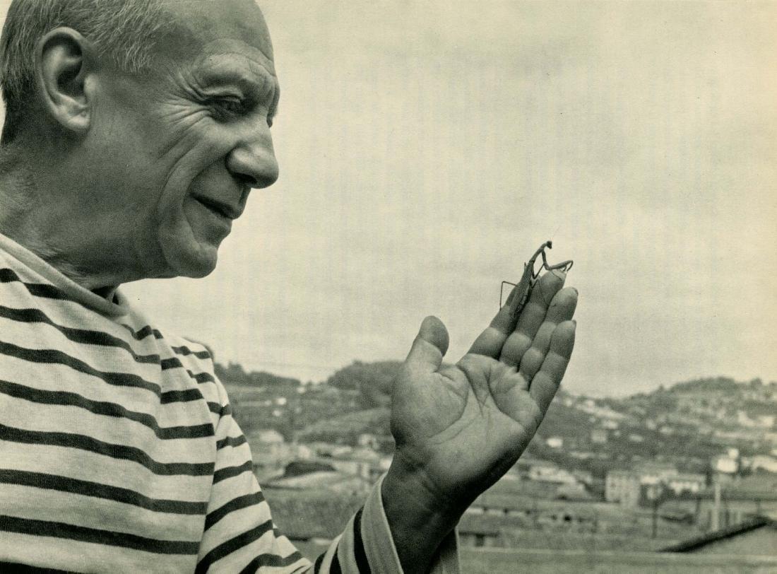 206: ROBERT DOISNEAU - Picasso et Mantis de Prière