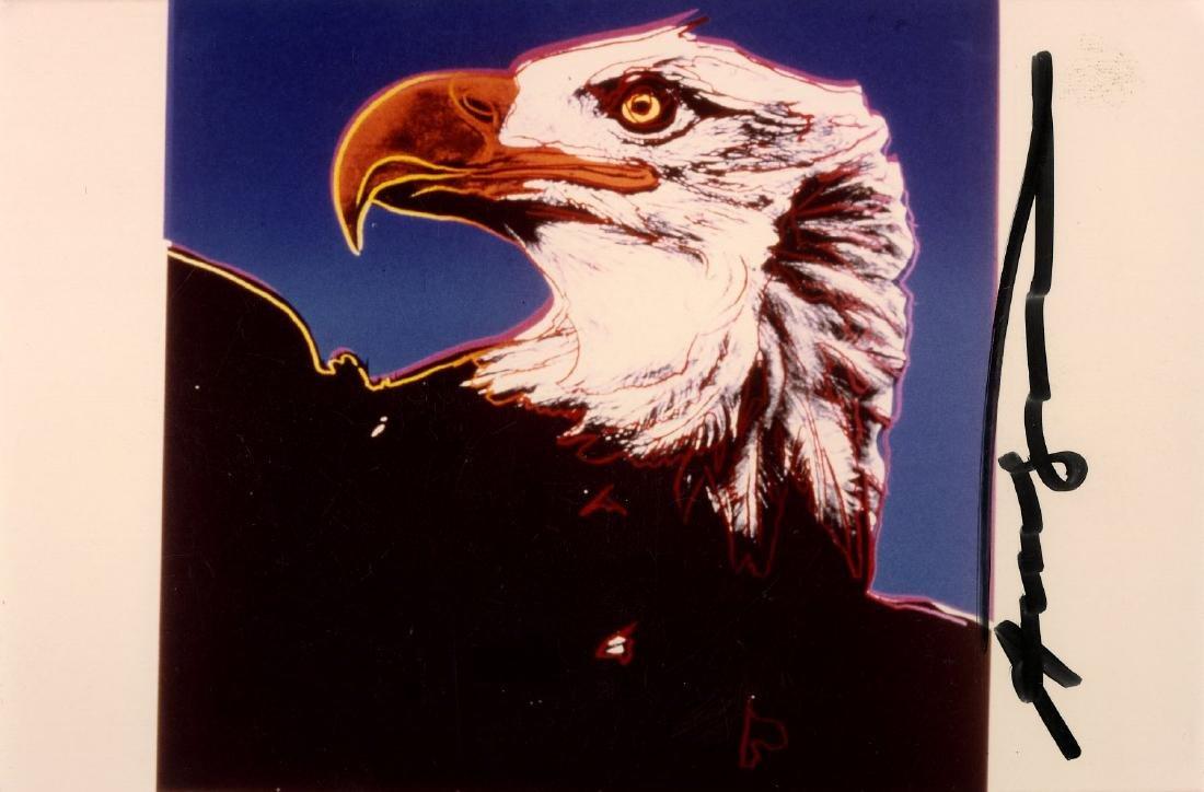 582: ANDY WARHOL - Bald Eagle
