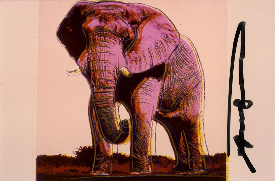 625: ANDY WARHOL - African Elephant