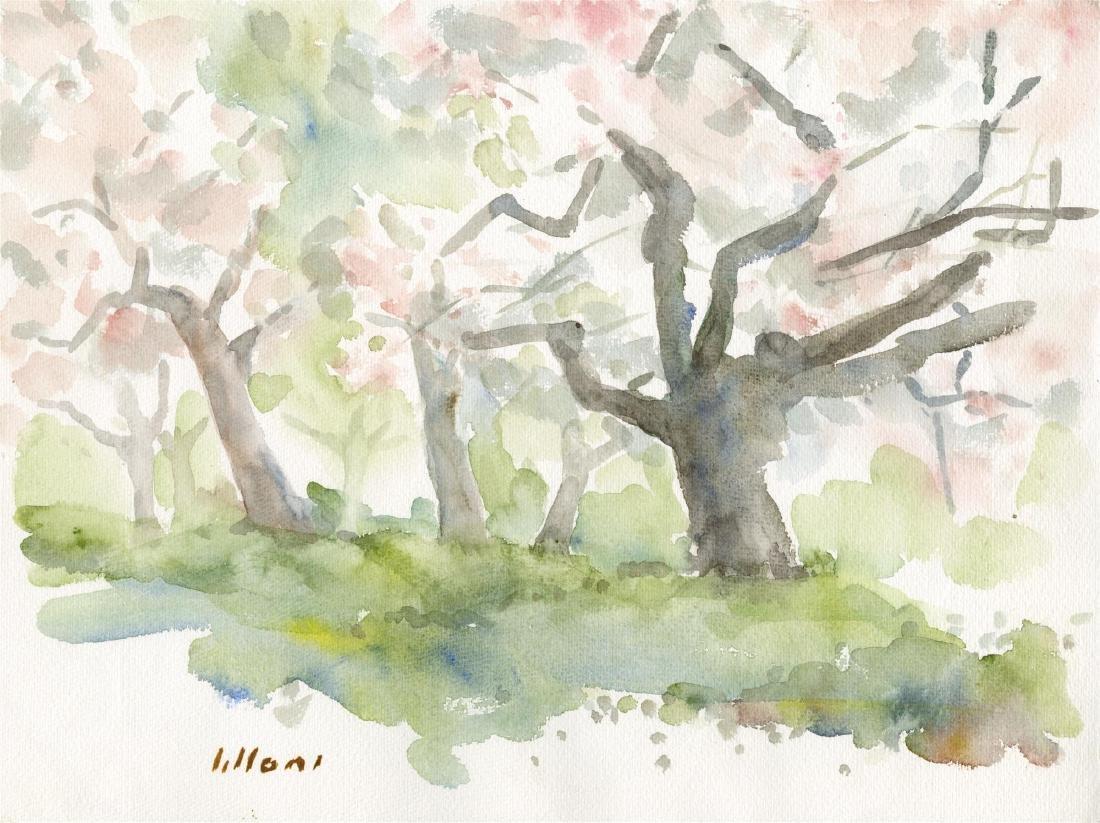 1871: UMBERTO LILLONI - Bosco