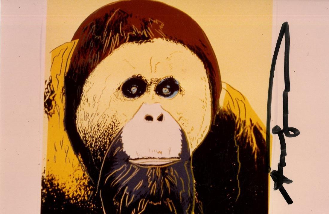 418: ANDY WARHOL - Orangutan