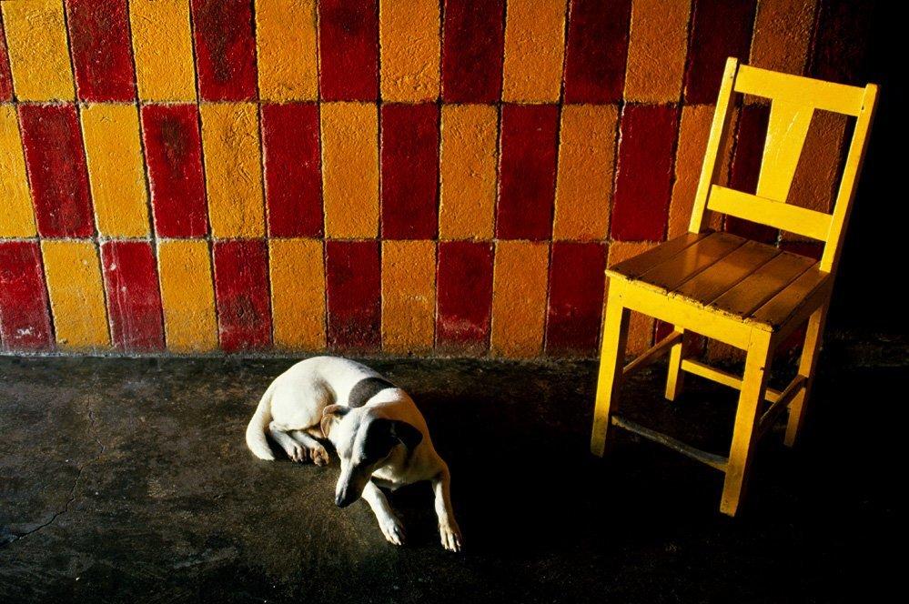 44: PABLO AGUINACO LLANO - Color analogue photograph