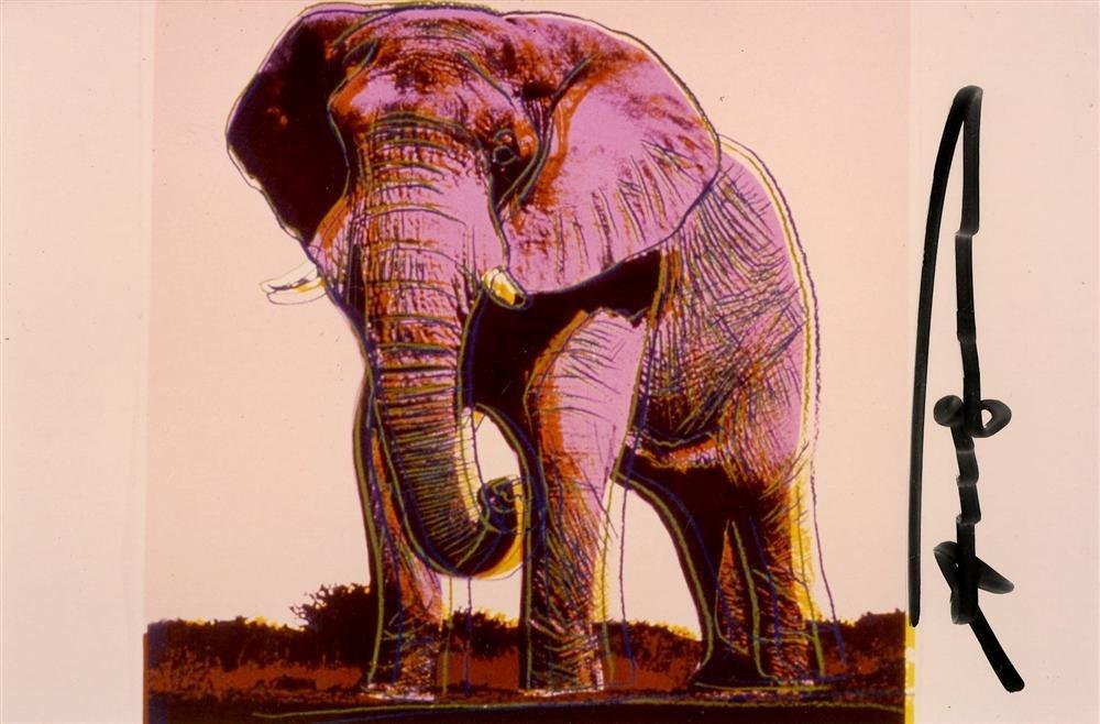 606: ANDY WARHOL - African Elephant