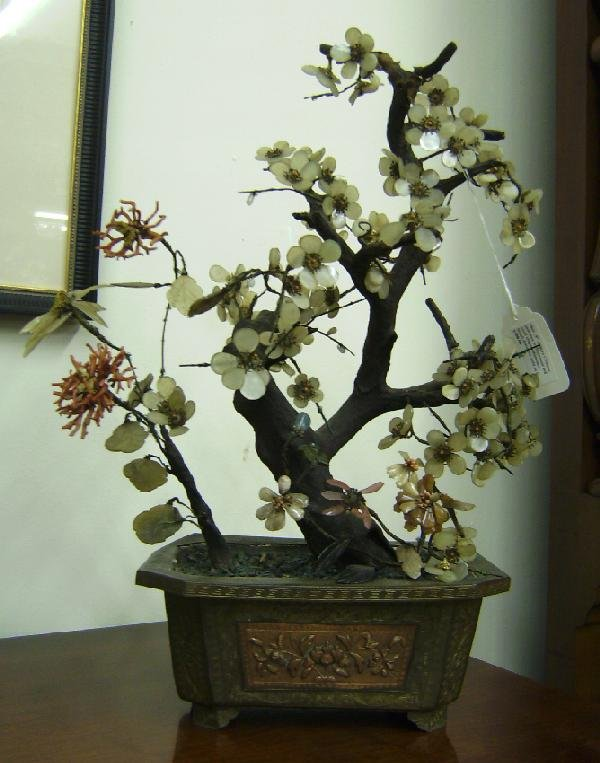 52: Chinese jade tree