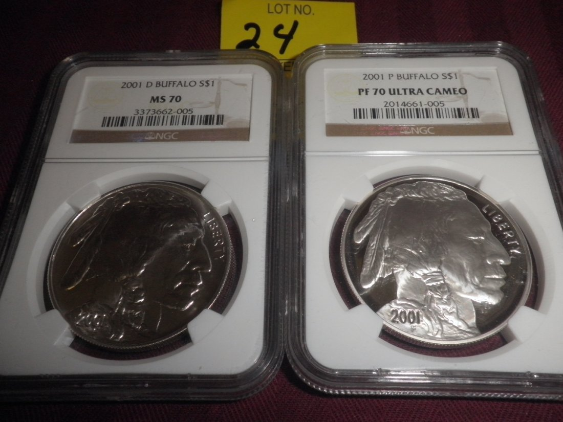 24: Pair of 2001 Buffalo Silver Dollar Commemoratives