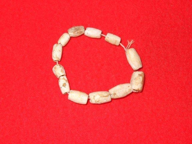 "18: 4"" Strand of Shell Beads Hart Co. KY"