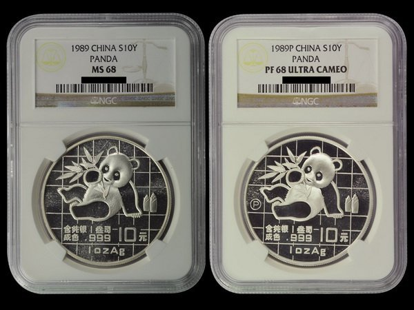 CHINA 1989 Panda 10 Yuan 1 Oz Silver(2)