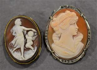 (2) Shell Cameo Broaches