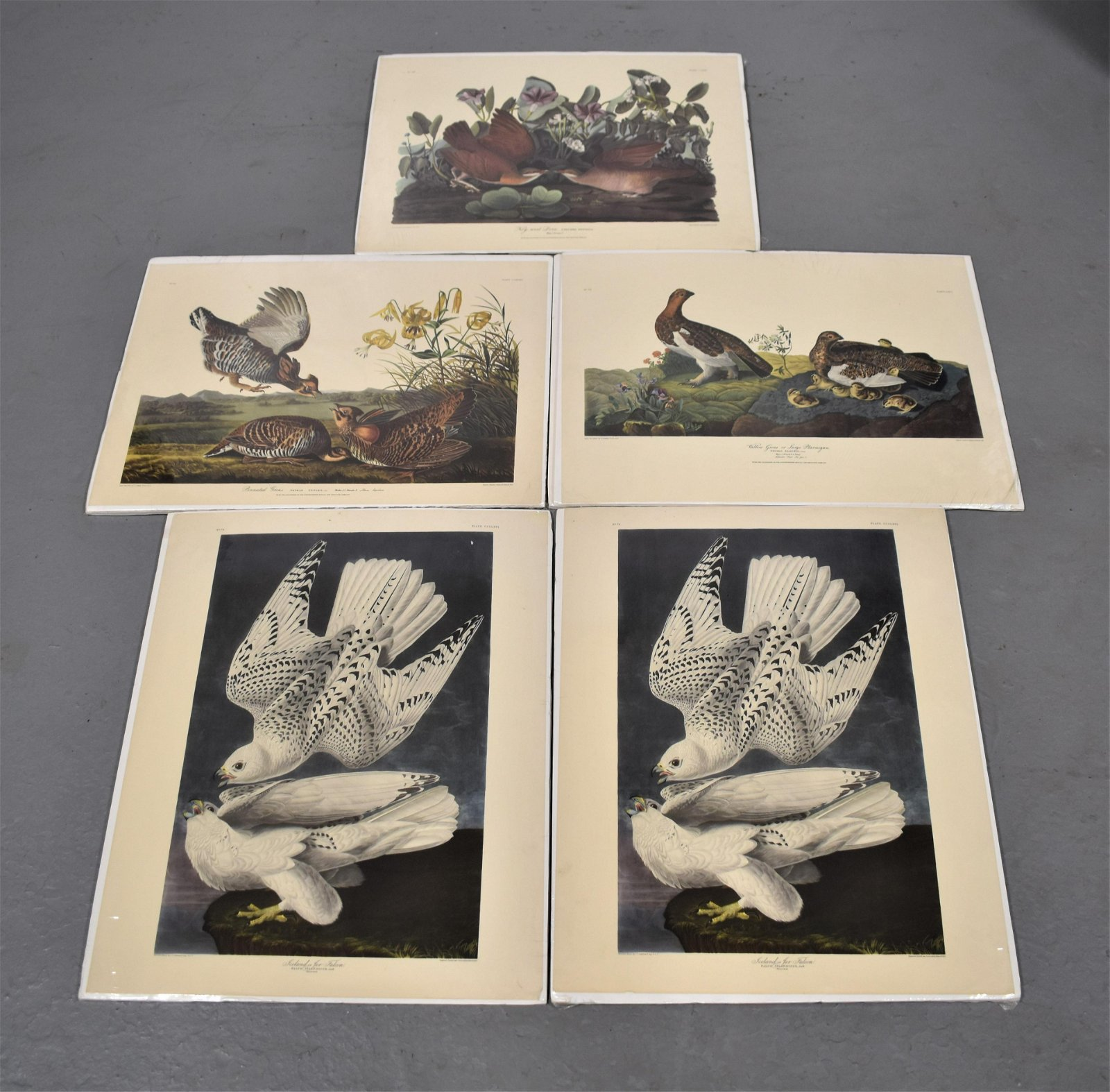 Set (5) Northwestern Mutual Life Audubon Prints