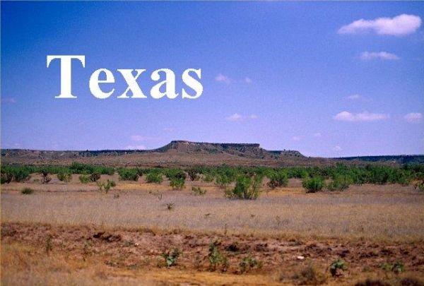 954326: Hudspeth, TX Property 10 Acres