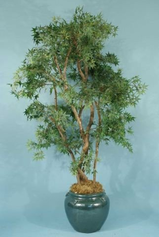 15: FAUX JAPANESE MAPLE TREE IN CHINESE PORCELAIN POT