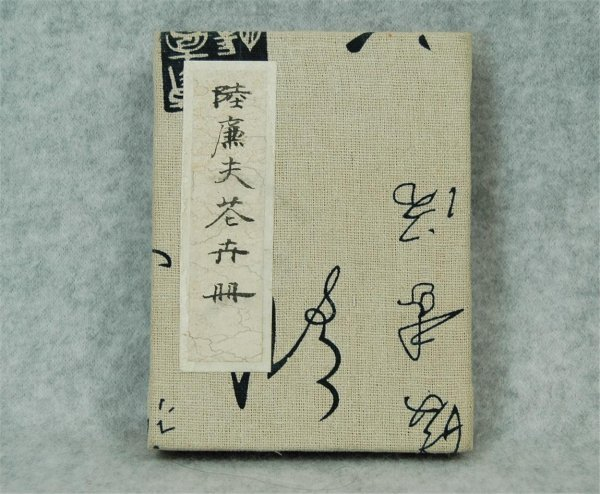 2505: Small  Chinese  Painting  Album
