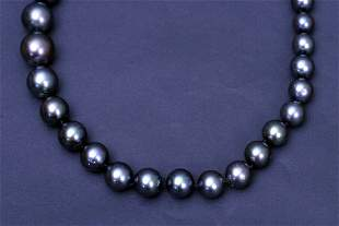 """20"""" South Sea Pearl Necklace"""