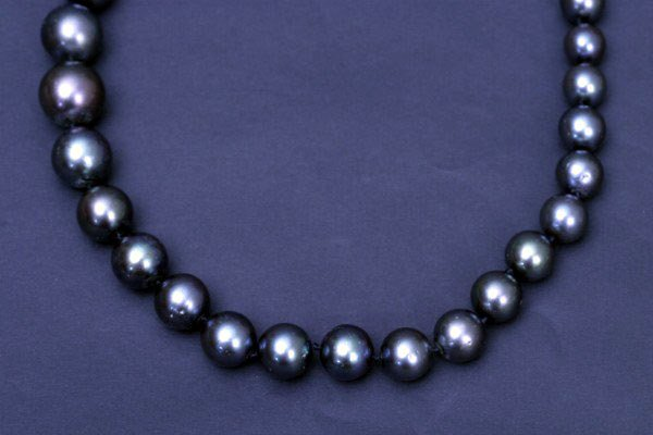 """22: 20"""" South Sea Pearl Necklace"""