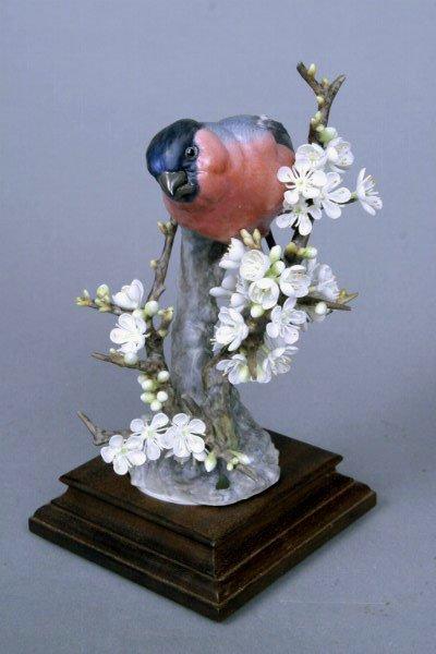 228: Doughty Bullfinch & Blackthorn