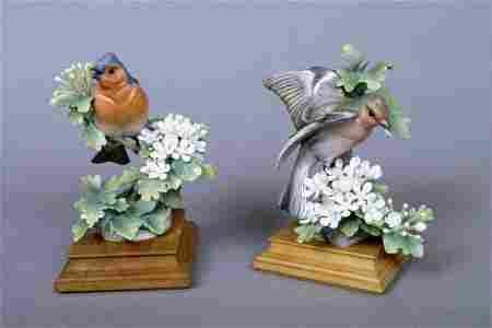 229: Pair of Doughty Chaffinch & May