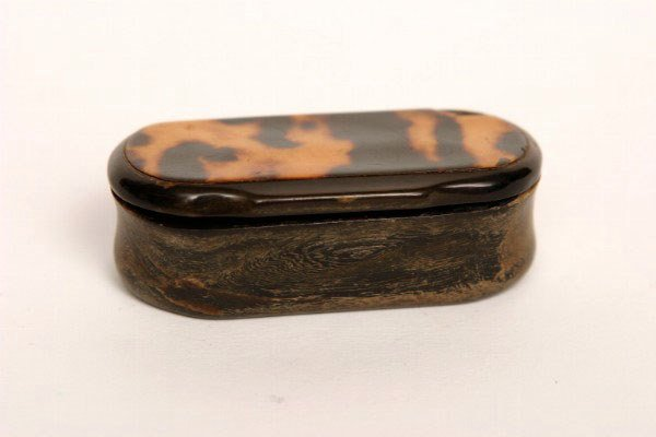 2: Tortoise and  Horn Snuff Box 19thc.