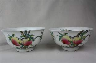 A Pair of Chinese Famille Rose Porcelain Bowl