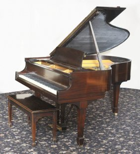 20: Steinway Model M Grand Piano