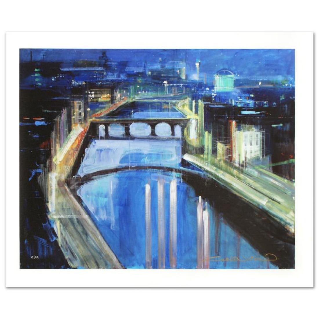 Dublin by Night by Zwarenstein, Alex