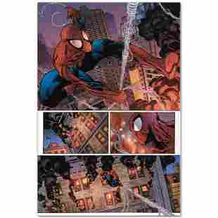 The Amazing Spider-Man #596 by Marvel Comics