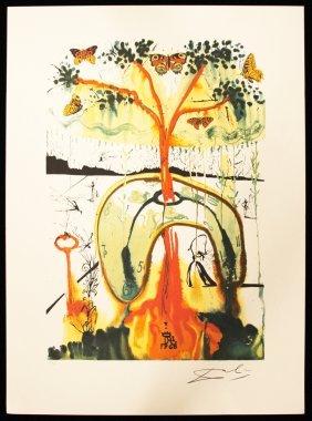 """Salvador Dali """"Mad Tea Party"""" Fine Art Print AP470"""