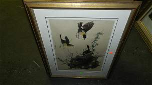 131: John J. Audubon marked ,framed and matted bird & f