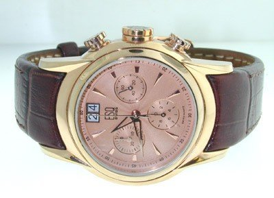 10: ESQ Stainless Steel Leather Strap Watch.