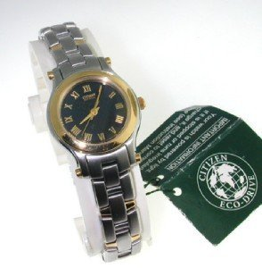 18: Citizen eco drive stainless steel watch