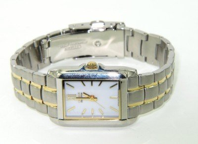 10A: Citizen eco drive stainless steel watch