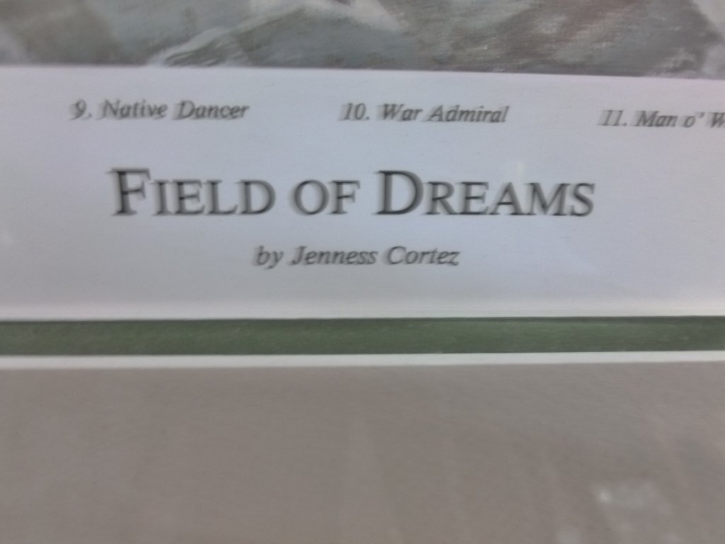 Original Jenness Cortez print of Field of Dreams - 2