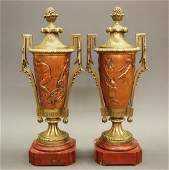 Pair Neoclassical urns