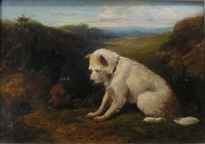 9: Terriers o/c