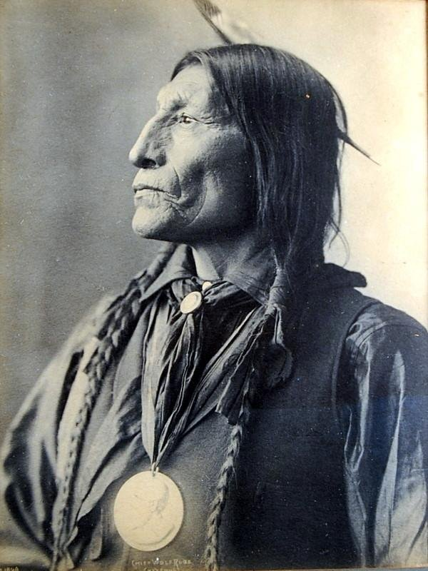 indian chief and wolf - photo #30
