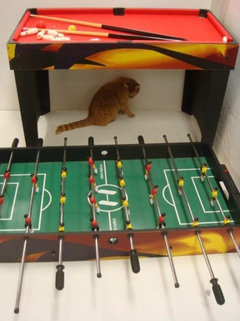 219: HARVARD Foosball Multi-Game Table: : Lot 219