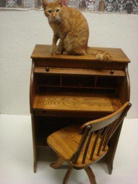 199 Paris Mfg Co Childs Golden Oak Roll Top Desk Cha Lot 199