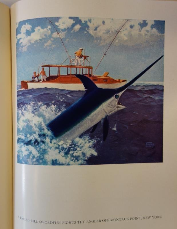 Atlantic game fishing by farrington lot 220 for Atlantic game fish